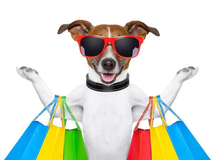 Salty Dog Web Design - eCommerce