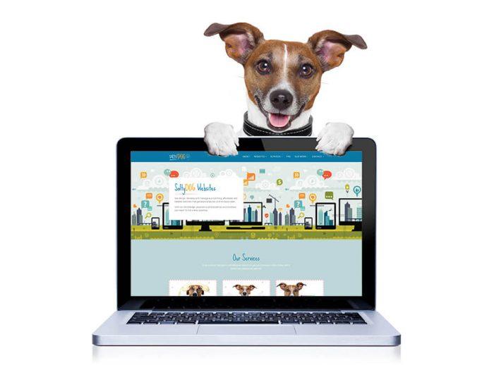 Salty Dog Web Design - Websites